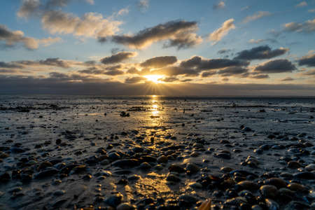 View on the wadden sea of the north sea at low tide at sunset near Bernersiel, Germany Фото со стока