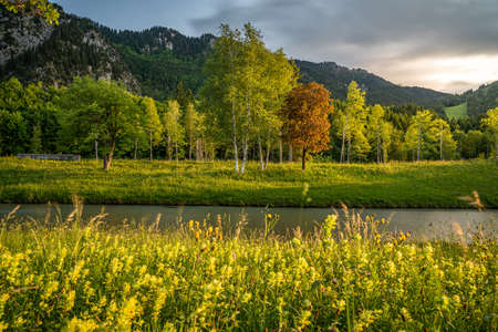 sunset at the ammer river bank in Oberammergau, Germany