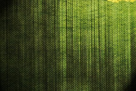 Picture of a grunge green background photo