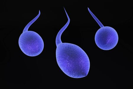 semen: 3d illustration of  sperm cell isolated over black background Stock Photo