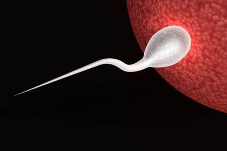 Human sperm close to ovum isolated on black background photo
