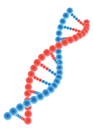 DNA model on white background Illustration