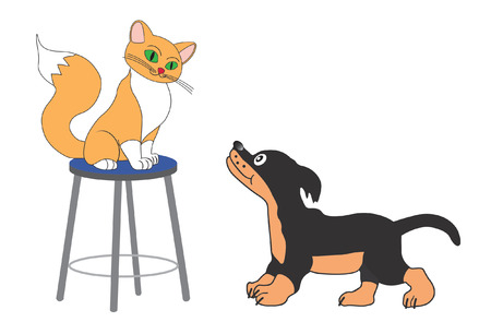 Sitting cat and little dog on white background