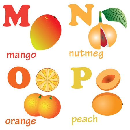 Illustrations of alphabet letters from M to P with pictures of fruits Ilustração