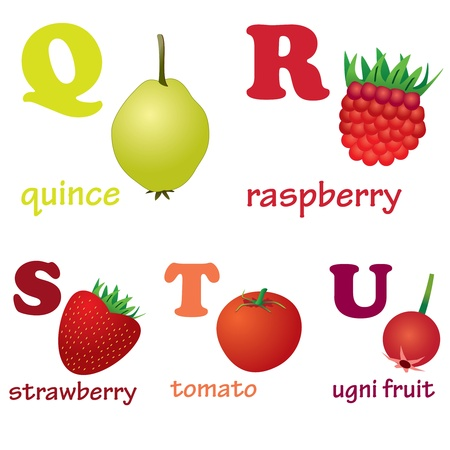 Illustrations of alphabet letters from Q to U with pictures of fruits