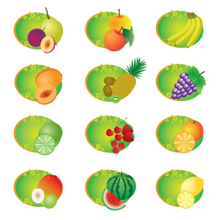 jujube fruits: Set of icons with fruits on the white background.