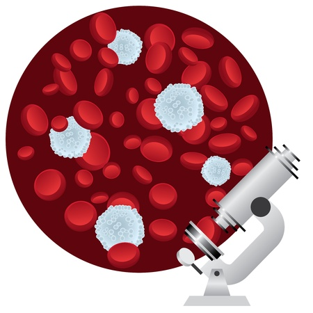 Red and white blood cells under a microscope.