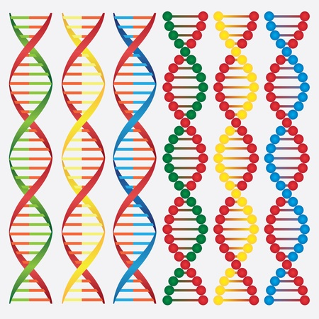 Set of abstract images of DNA molecules on the white background. Illustration