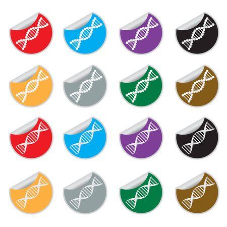 white bacground: Conjunto de pegatinas de colores con im�genes de ADN en el fundamento blanco. Vectores