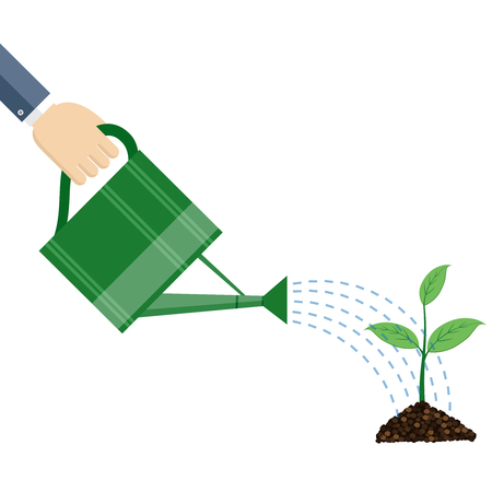 Hand holding watering can watering plant, business concept, flat design. 向量圖像