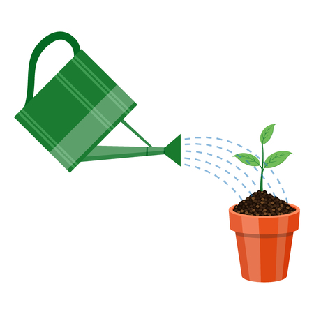 watering pot: Watering can and plant in the pot. Growing idea concept.