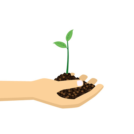 plant growth: Hand holding young green plant. Growth concept illustration.