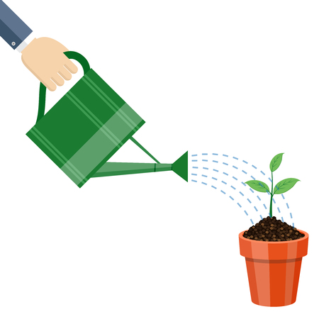 watering pot: Watering can and plant in the pot. Growing idea concept. illustration. Illustration