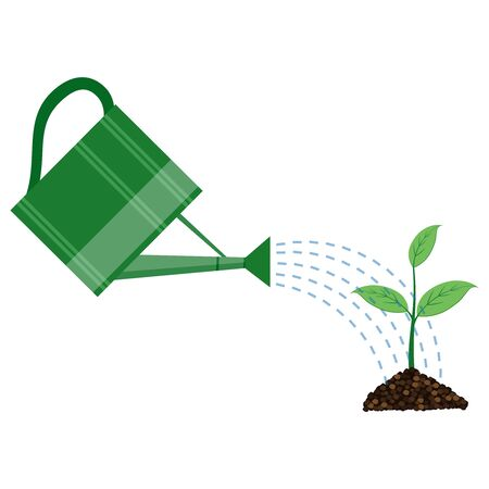 cultivation: Young plant with watering can on the white background Illustration