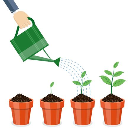 Watering can and plants in pots on white background. Illustration
