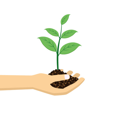 plant hand: green plant in hand on the white background. Illustration