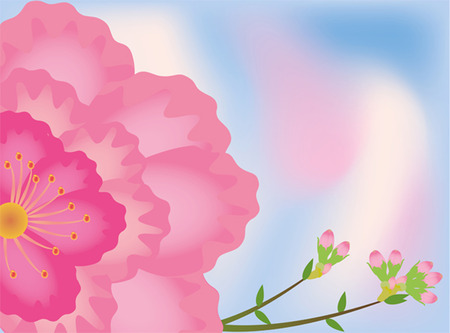 background sakura  Vector