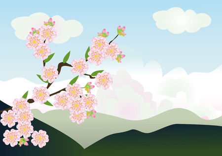 vector cherry blossom with mountains at the background  Stock Vector - 8687491