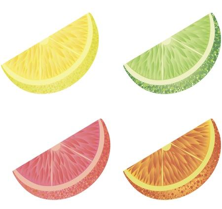 Vier der citrus Segmente isoliert  Vektorgrafik