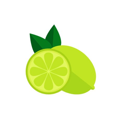 Lime fruit icon. Lime icon isolated on white background. Flat style vector illustration.