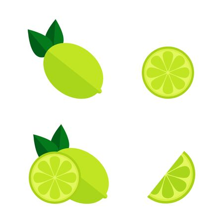 Lime icon on white background. Whole and cut lime set. Tropic fruit. Flat vector illustration design.