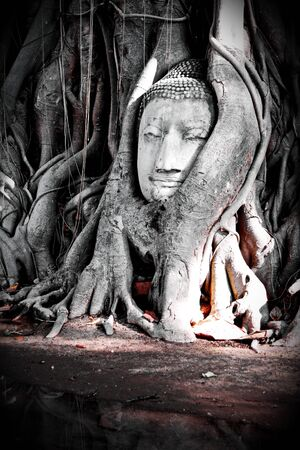 unseen: Unseen of thailand Buddha head Stock Photo