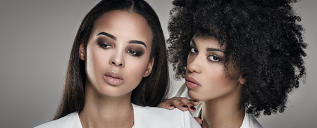 Two elegant young african american women posing together.