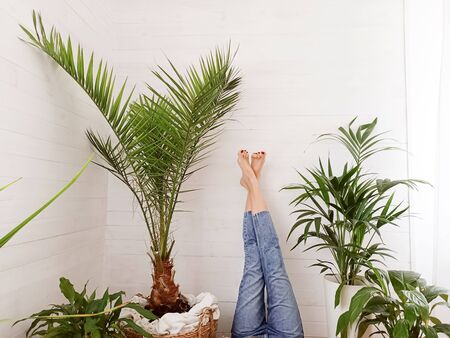 Photo of girl with legs in jeans up, resting in home , lying over green houseplants.