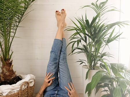 Photo of girl with her legs in jeans up, resting in home , lying over green houseplants.