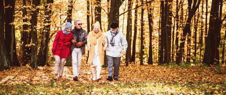 Group of senior friends walking in beautiful colorful autumn park. Old age persons talking during walk, spending time together on fresh air. Retirement and positive elderly lifestyle concept.