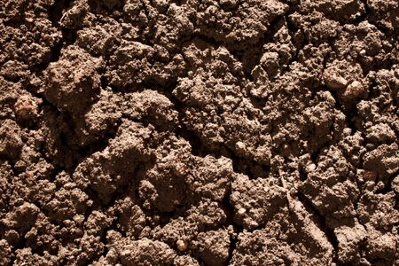 drought soil Stock Photo - 9458326