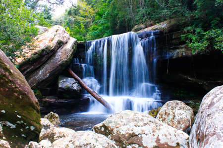 water fall: Water Fall in the forest