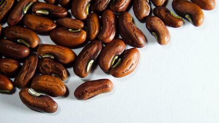 Macro Beans seed Stock Photo