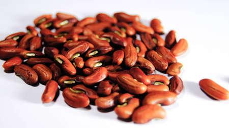 Beans Closeup