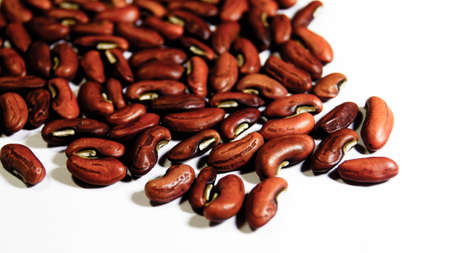 Beans seed close up