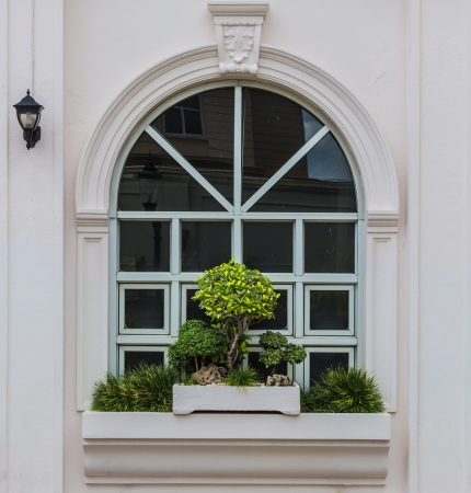 Arch window with bonsai decoration and street lamp reflection  Stock Photo
