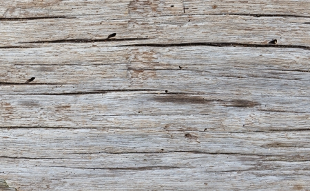 Wood Texture Background, Natural Color,  Horizontal Pattern  Stock Photo - 16835897