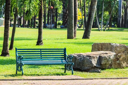 Green Bench in Palm Park Background Stock Photo - 18792799