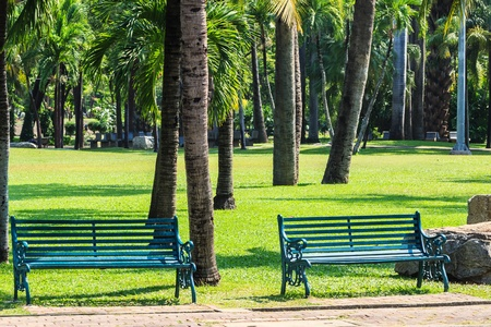 Green Benches in Tropical Garden Stock Photo - 18792800