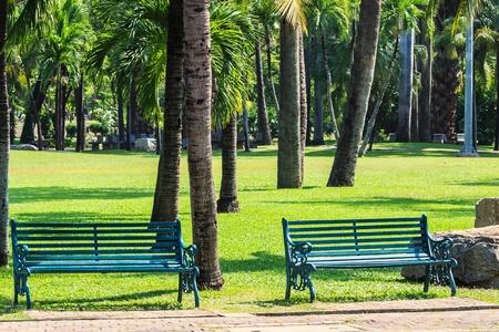 Green Benches in Tropical Garden Stock Photo - 18792800
