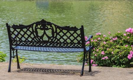 Green Bench near the Lake in Summer Stock Photo