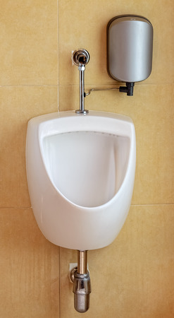White Urinal in the Restroom, Closeup