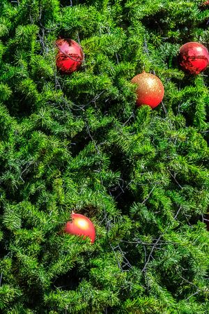 Glittering Christmas Ball Decoration on X-Mas tree, Closeup in selective focus with copyspace available