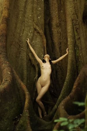 Anonymous nude in rainforest next to huge fig tree Stock Photo