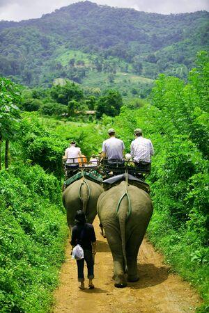backs: Tourist group rides through the jungle on the backs of elephants