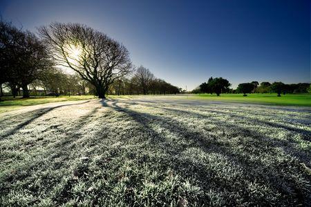 Temprano en la ma�ana a las heladas de hierba sobre el terreno en Nueva Zelandia
