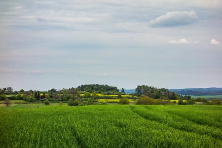 Wanderung in Ostelsheim, im schwarzen Wald an einem bewölkten Tag im Frühjahr Standard-Bild - 83975256