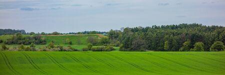 Wanderung in Ostelsheim, im schwarzen Wald an einem bewölkten Tag im Frühjahr Standard-Bild - 84333948