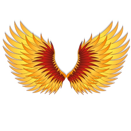 bird shadow:  Straighten wings of the phoenix  Abstact vector illustration