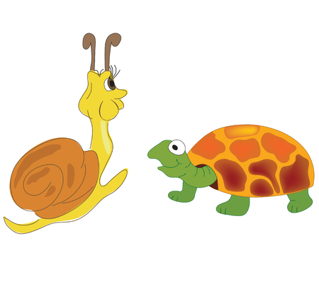 vector illustration of the tortoise and snail